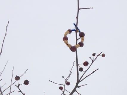 Easy Homemade Bird Feeders