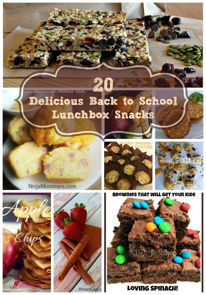 20 Delicious Back to School Lunch box Snacks