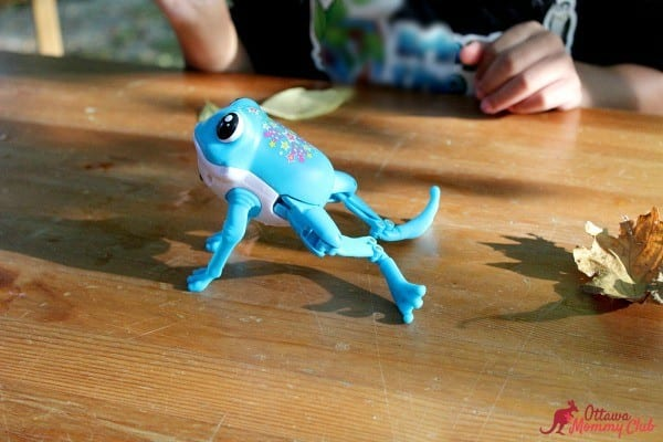 ottawa-mommy-club-little-live-pets-frog-jump-photo-2
