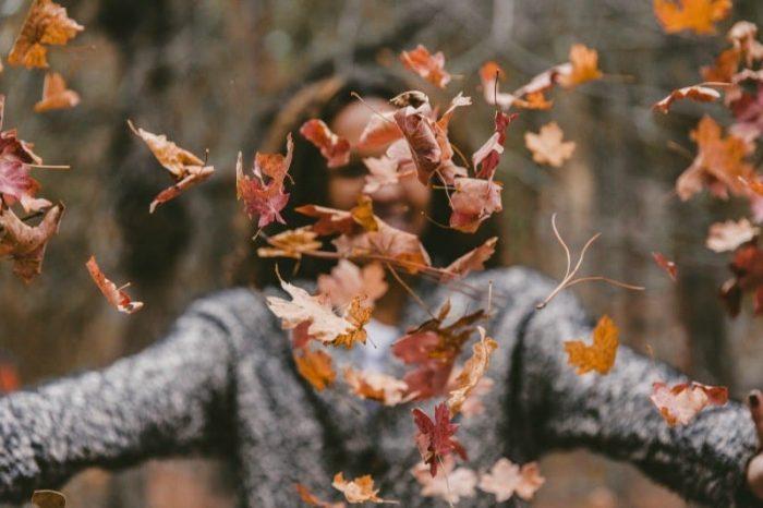 reasons to love fall season