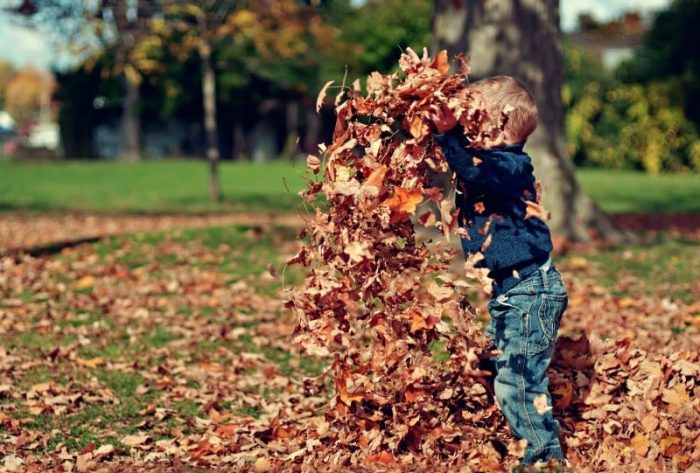 How to Stay Fit in the Fall Months