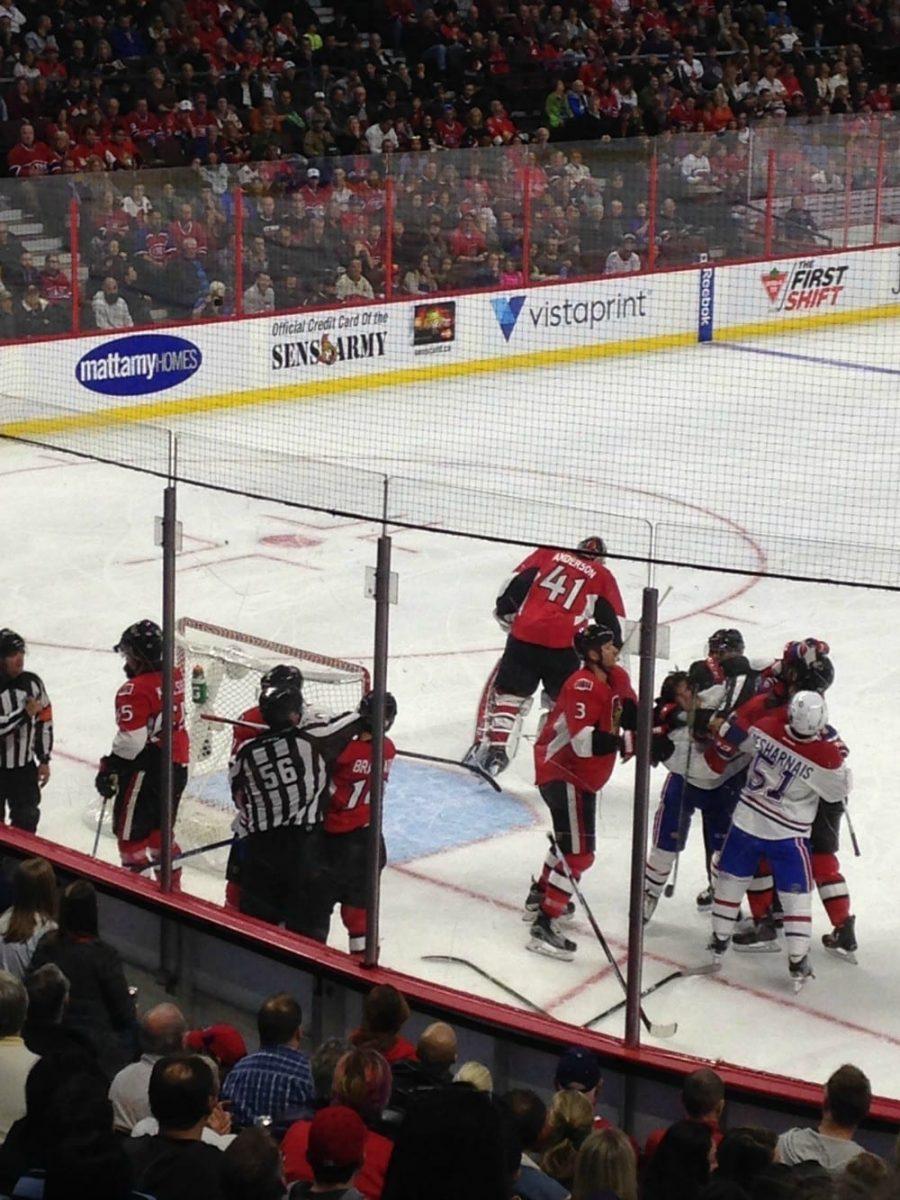 Best Hockey Goalie Equipment In 2017