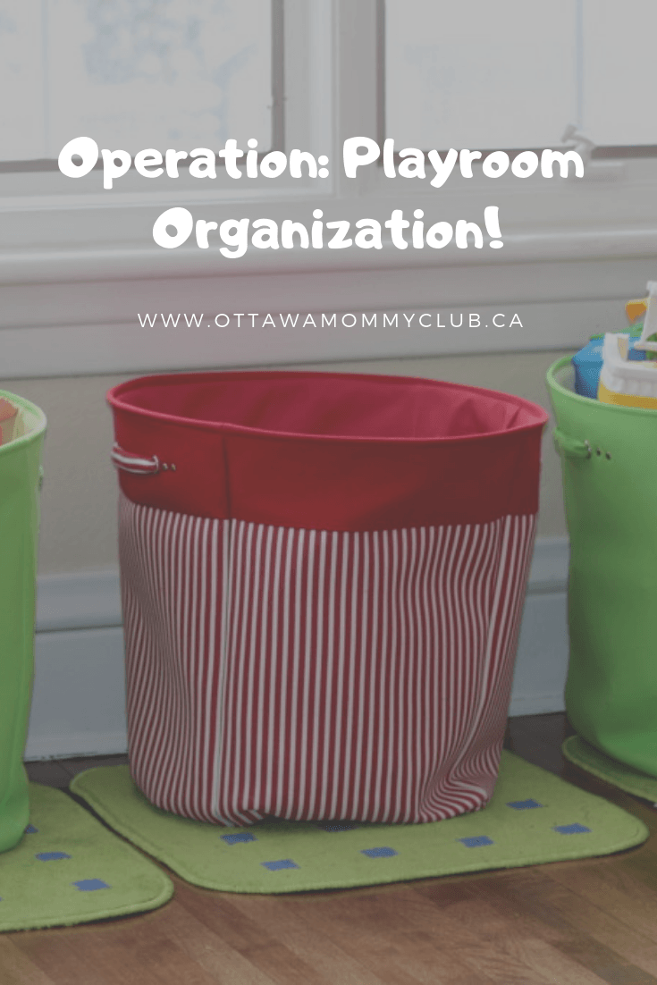 Operation: Playroom Organization!