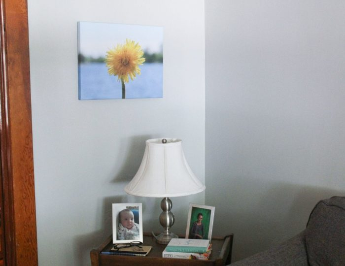 Pop Life into Your Home with Canvas Factory