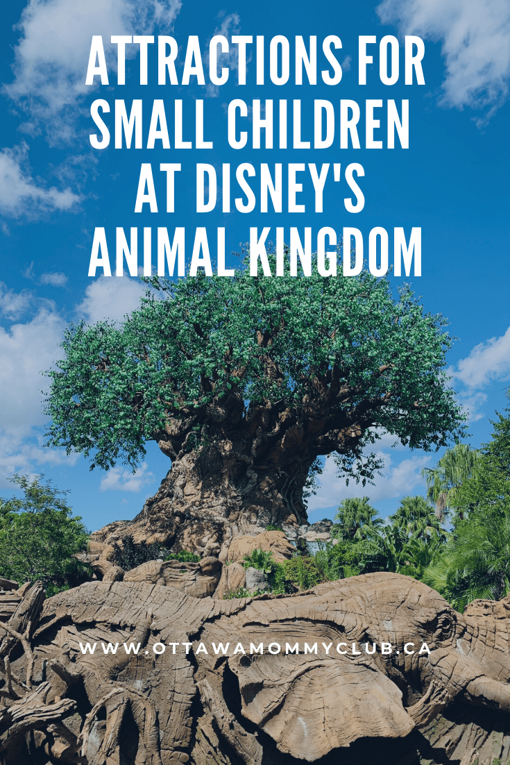 Attractions for Small Children at Disney's Animal Kingdom