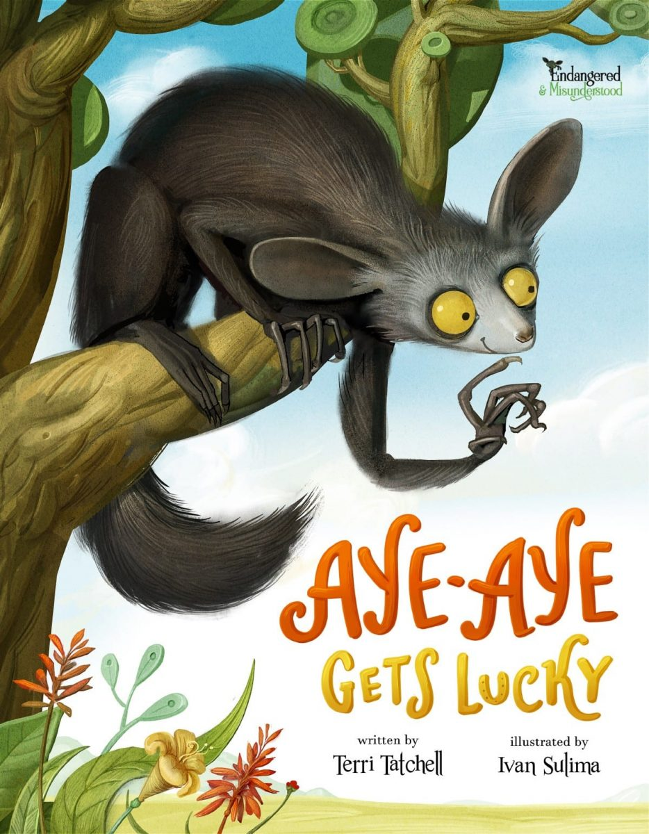 Seeing Beyond the Surface with Aye-Aye Gets Lucky
