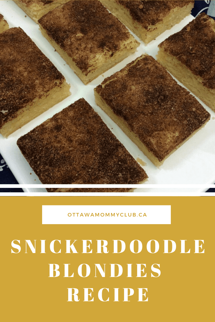 Snickerdoodle Blondies Recipe