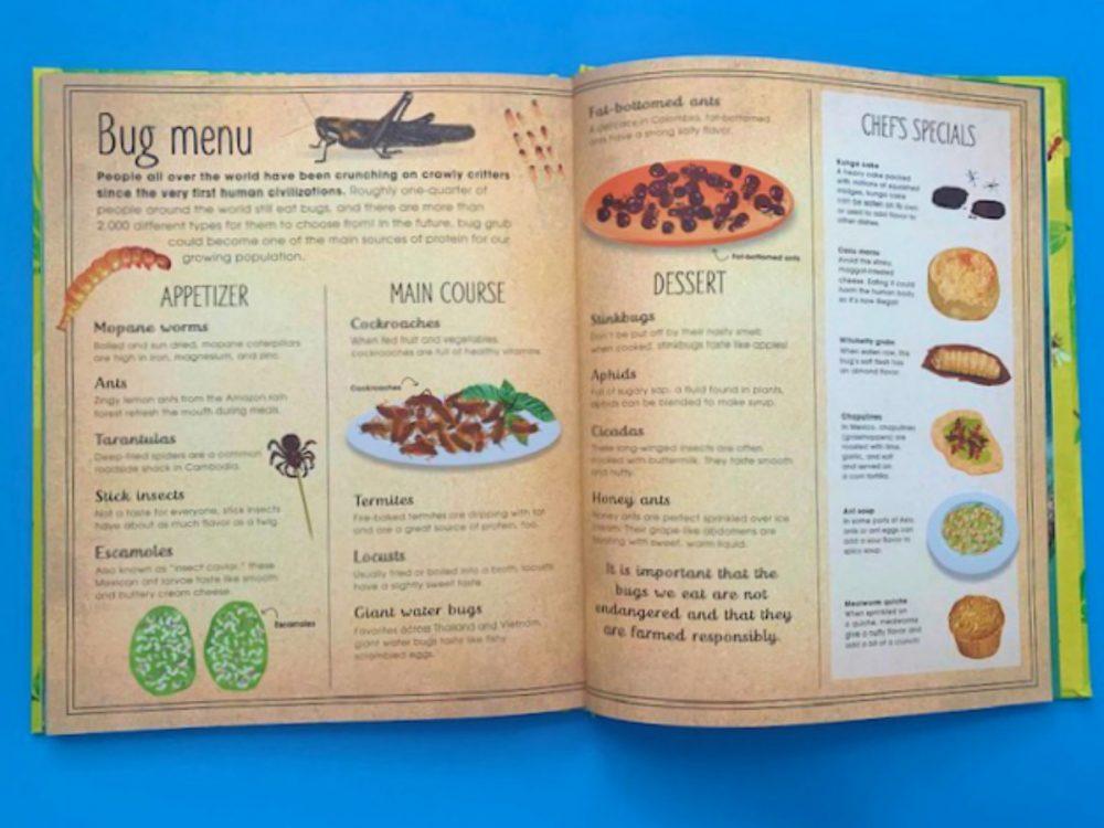 DK Canada Bugs Book