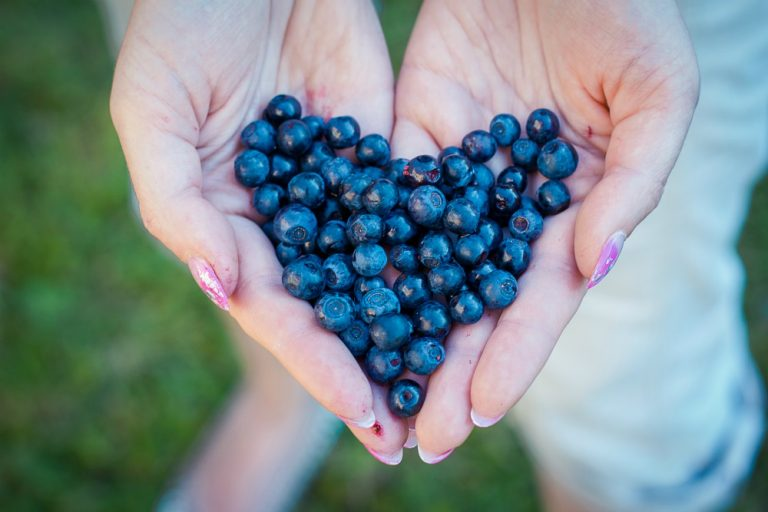 Health Benefits Of Eating Blueberries