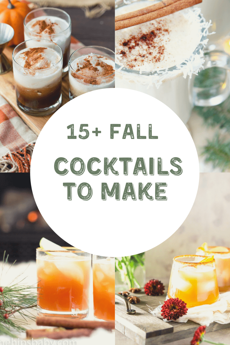 15+ Fall Cocktails To Make