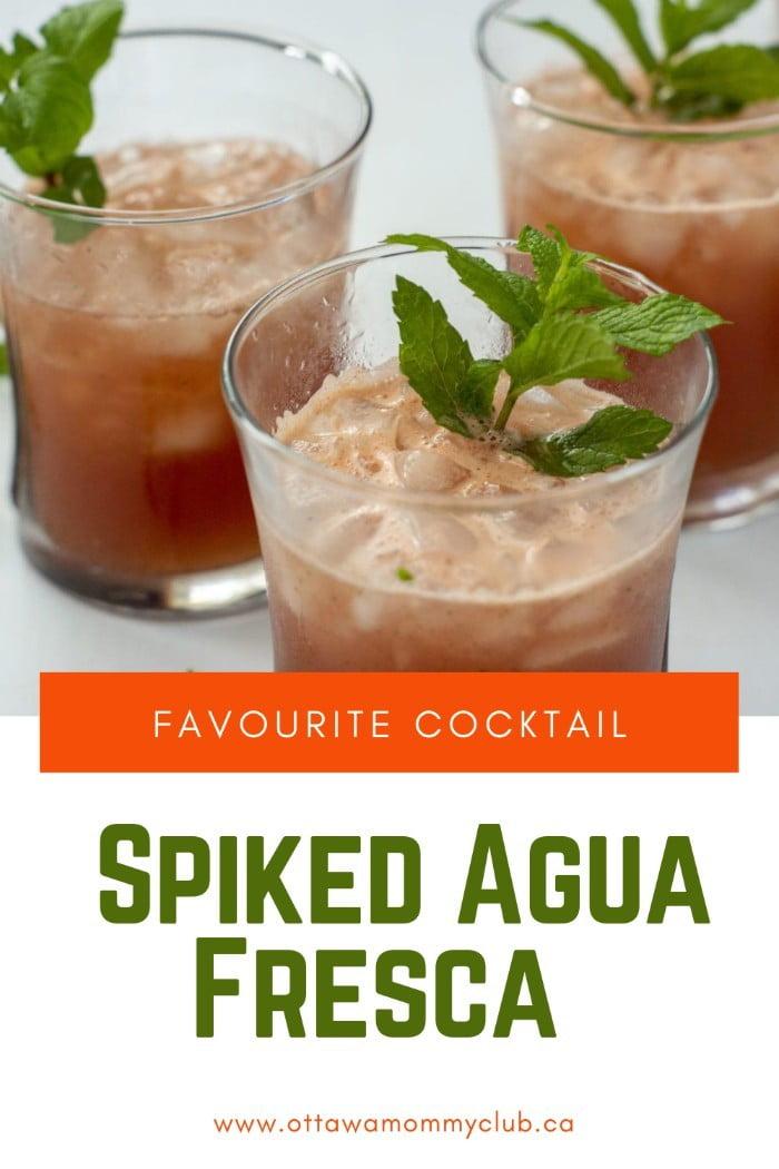 Spiked Agua Fresca Recipe