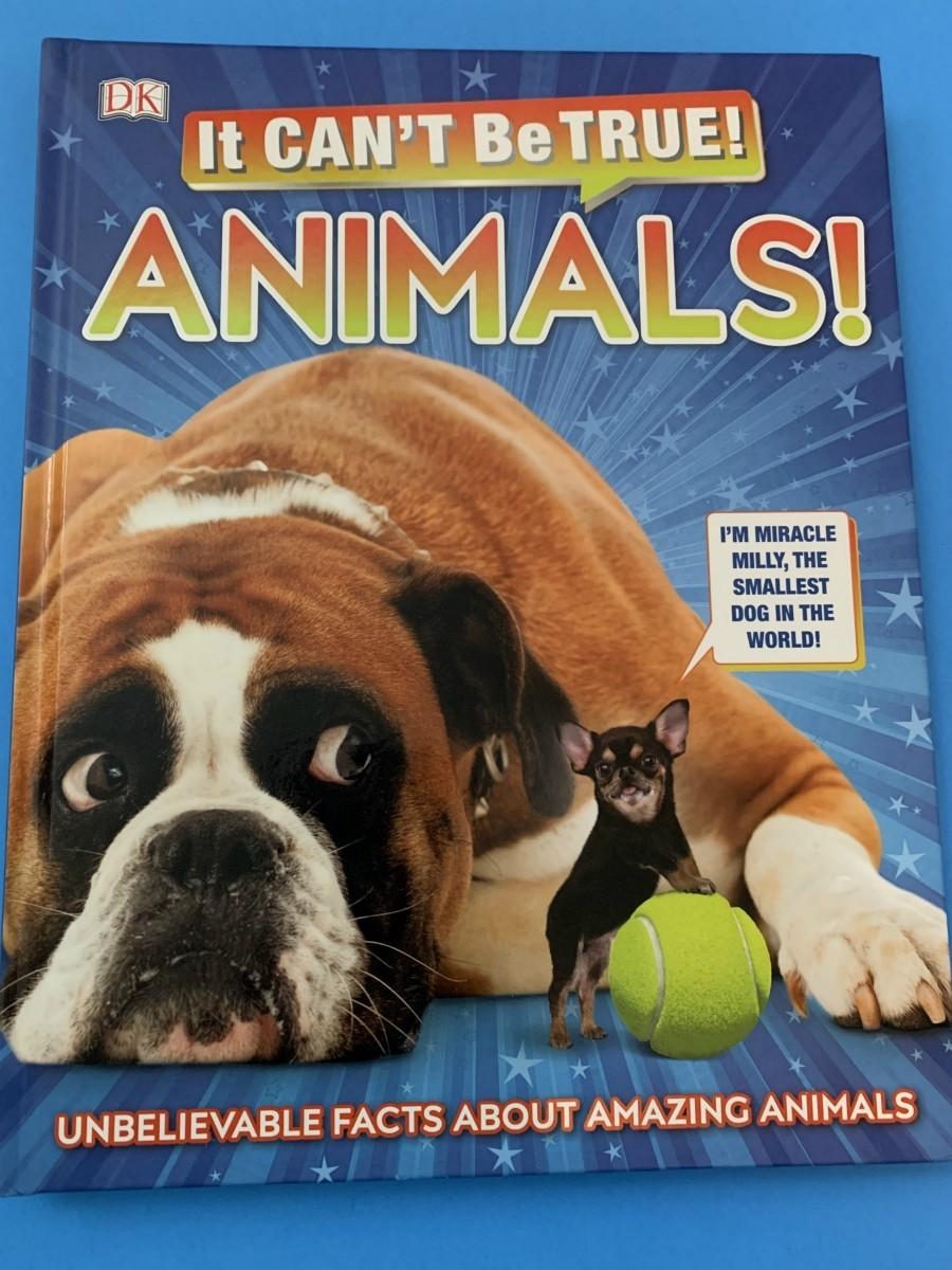 It can't be true! Animals! Book