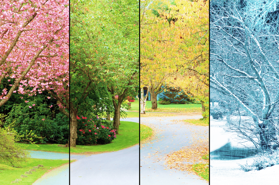 The seasons in Canada