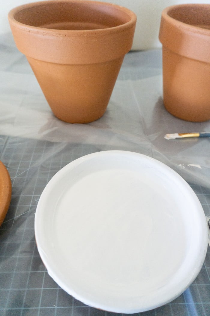 Terra Cotta garden pots painted in white